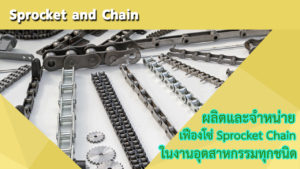 Sprocket-and-Chain