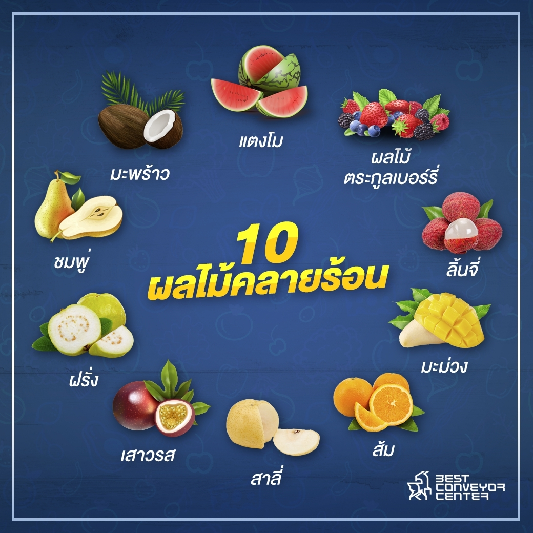 10 fruits for Cool off